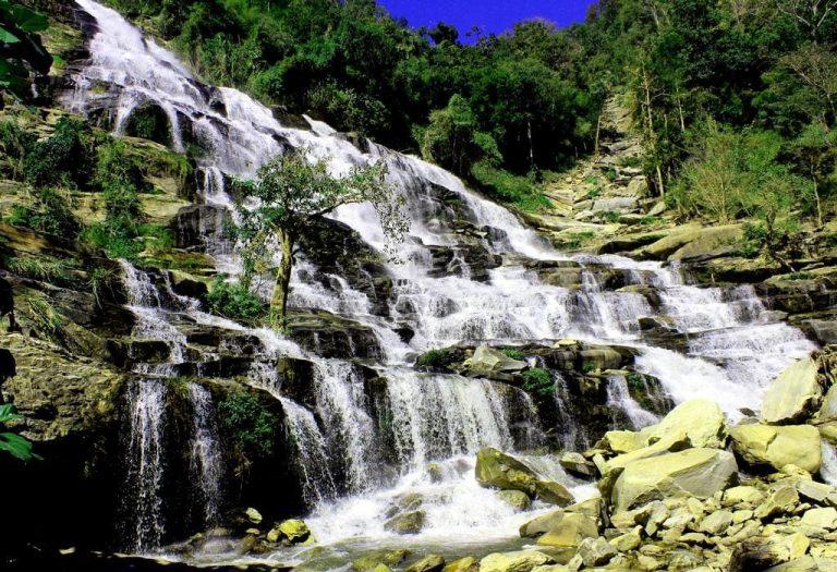 abundante-agua-arbol-tailandia